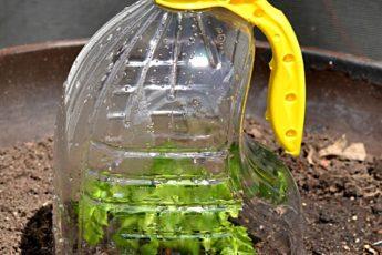 Микропарник из 5-ти литровой бутылки своими руками